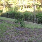 Wrought Iron Fencing Jacksonville FL